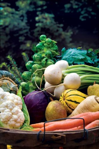 légumes-jardin