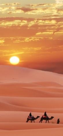 désert-beauté