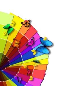 couleurs-papillons