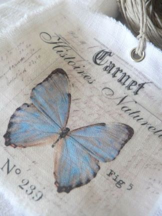 2017-papillon