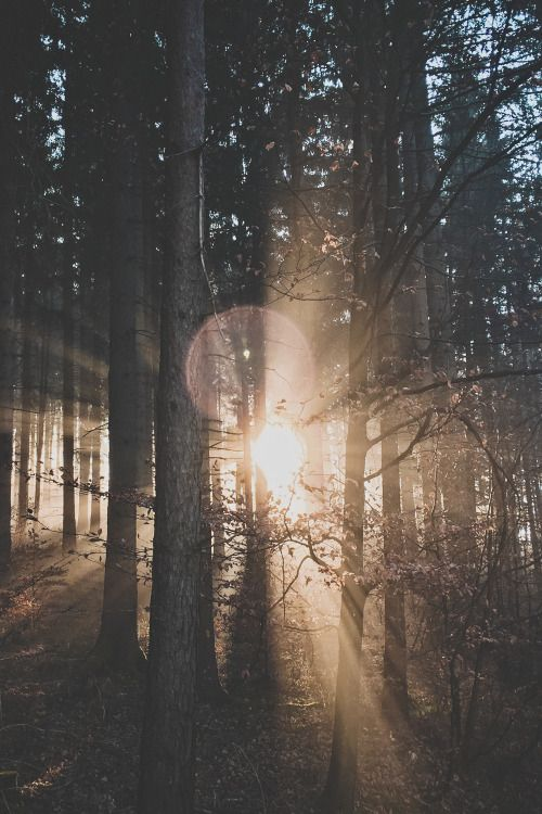 percee-soleil