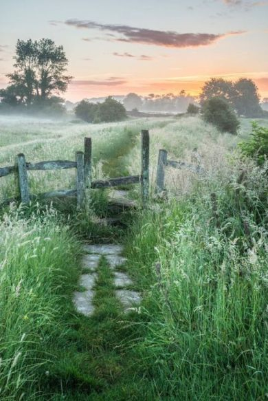 Stunning vibrant Summer sunrise over English countryside landscape