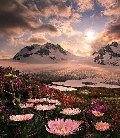 paysage-magnifique