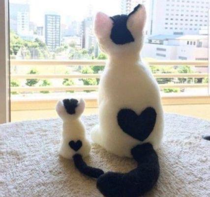chats-coeur